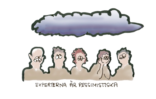 experterna-ar-pessimistiska