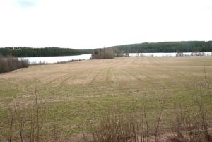 Sjön Liljan